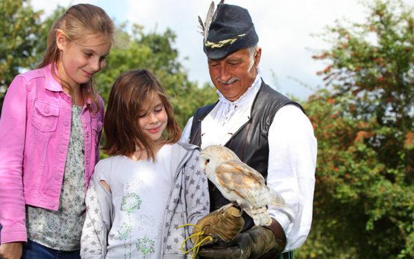 Girl holding barn owl at Mary Arden's Farm attraction